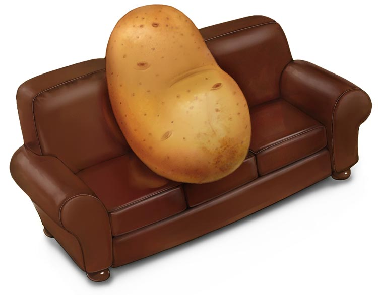 Who wore it better defranco for Couch potato sofa buddy